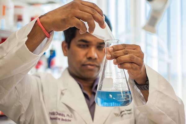 Regenerative Medicine Manufacturing