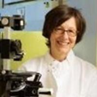Marie Csete, MD, PhD